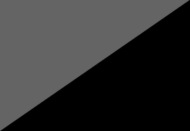 Gris-negro